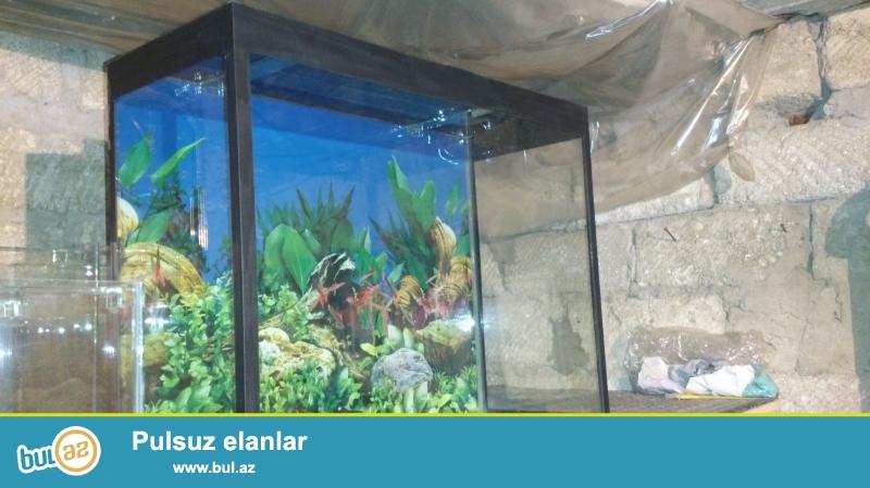 akvarium tezedir islenilmiyib sekli varidir qapaq varidir isiq varidir ust susesi radaj olunubdur 070 808 18 03 whatsapp