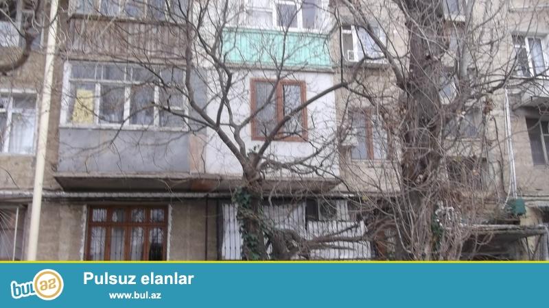 На пр. Строителей, за ЦСУ, каменный дом, 5/4, удачно перед...