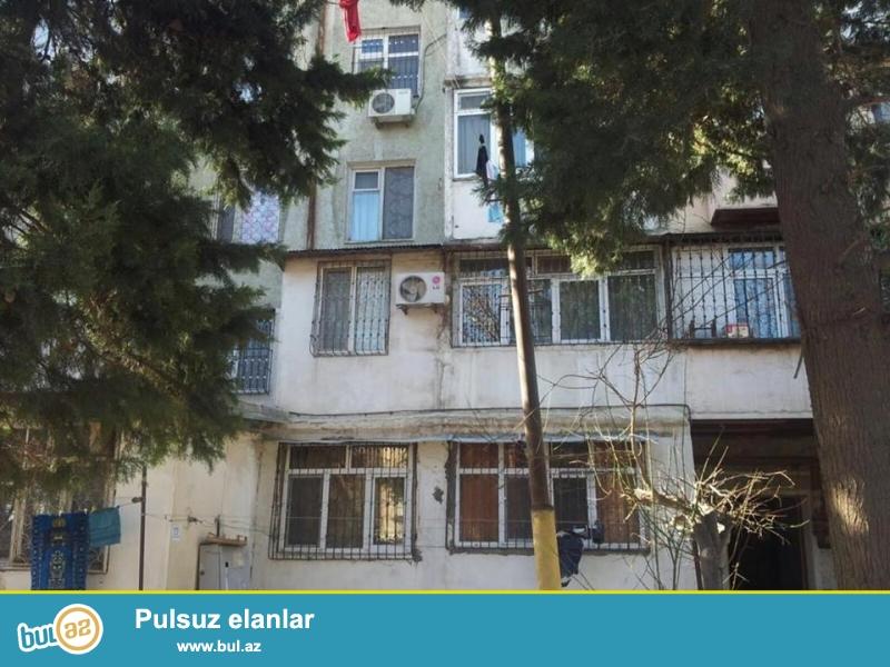 8 мкр, около Baku electronics, 5/4, каменный дом, хороший ремонт, полы паркет, окна PVC, чистая, уютная квартира сдается со всей новой мебелью, все условия для жилья...