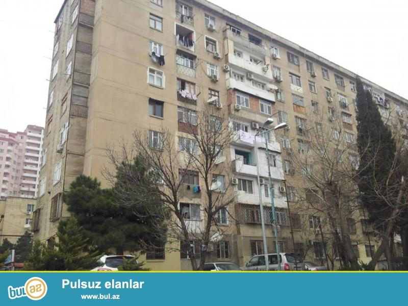 На пр. Тбилиси, Химгородок,  ленинградский проект, 9/1, раздельные, светлые комнаты, хороший ремонт, чистая, уютная квартира, полностью обставленная квартира, вся условия для жилья, с/у в идеальном состояние...