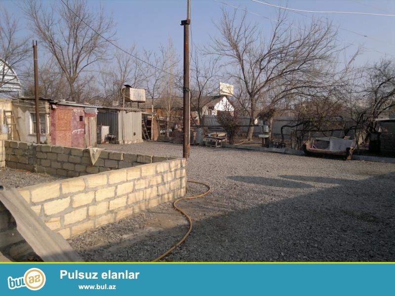 Berde Seher U .Hacibeyov 124 kohne bazarin 100m liyinde 2010cu ilde yasamaq meqsedile tikilmis heyet evi satilir...