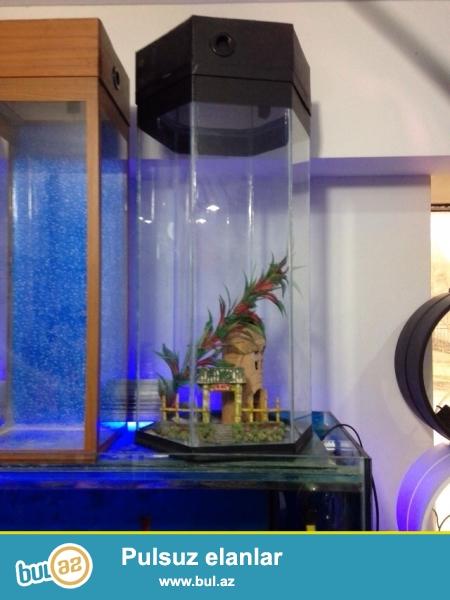 Akvariumlar razilasma yolu ile satilir
