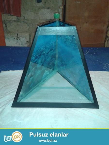 pramida akvarium