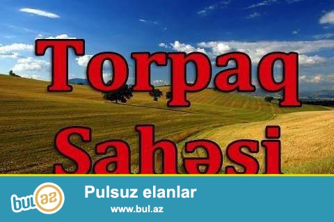 Maştağa qəsəbəsində tavaylıq deyilən ərazidə əsas yoldan 300-400 metr məsafədə hektar yarım torpaq sahəsi satılır...