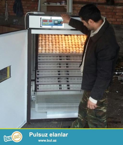 - İnkubatorlar tam avtomatlaşdırılmışdır.<br /> - Temperaturun, rütubətin və yumurtaların çevrilməsinin tənzimlənməsi mərkəzləşdirilmiş idarəetmə sistemi tərəfindən avtomatik aparılır...
