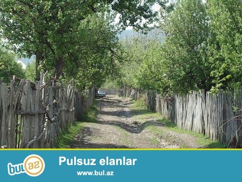 Ismayilli rayonunun Topcu kendinde 16 ve 20 sot bos torpaq sahesidir...