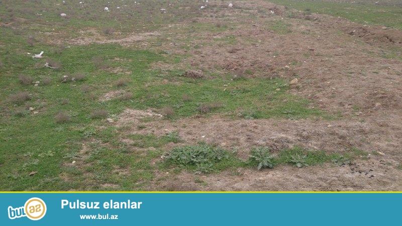 Zire Türkan baglarinin arasinda denize yaxin erazide waban baglari deyilen yerde tecili olaraq torpaq sahesi satilir