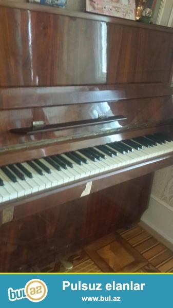 Orta veziyetde Accord piano tecili satilir