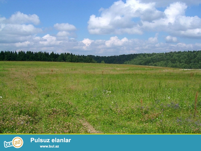 Maştağa subtropik savxoz ərazisində <br /> 12 sot torpaq sahəsi satılır...
