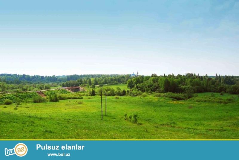 Maştağa subtropik savxoz ərazisində<br /> 6 sot torpaq sahəsi satılır...