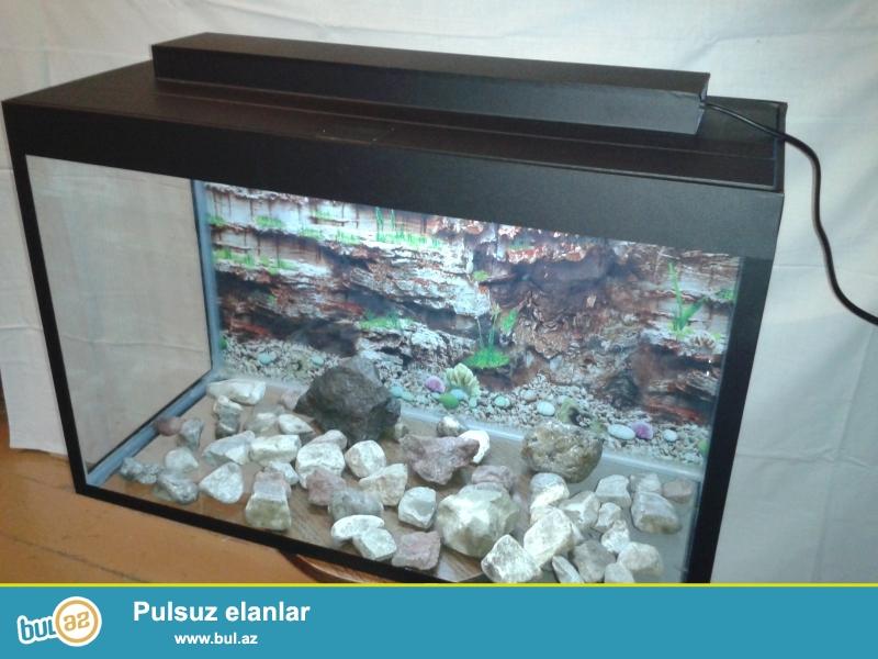 Akvarium uzunu 70sm eni 30 hun 45 sm  isiq varidir icindeki dasdarda verilir