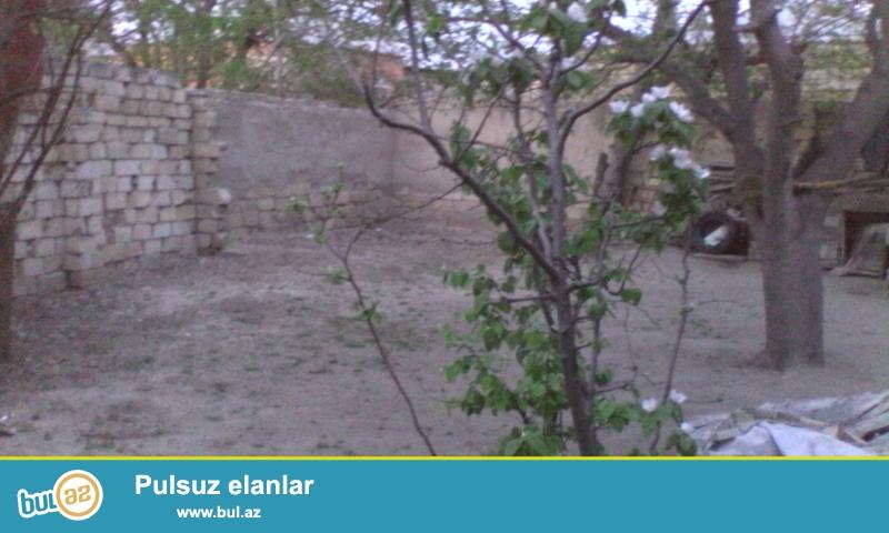Sumqayıt şəhəri 26-cı məhəllə xəzər bağları idrak liseyin arxasında təcili 1...