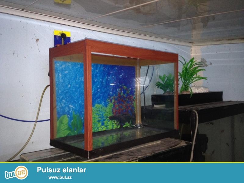 akvarium  teze uzunu 33sm ,hundurluyu 20sm,,eni 20 sm <br />