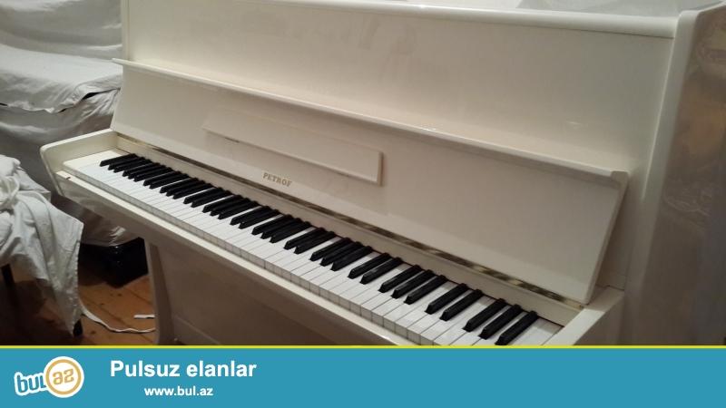 Sovershenno novoye 2-x pedalnoye pianino Petrof belogo cveta, i podderjannoye Petrof 3-x pedalnoye koricnevogo cveta.