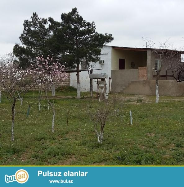 Satılır Bağ evi Vişnovka-2 ( 24sot) tikintisi var...