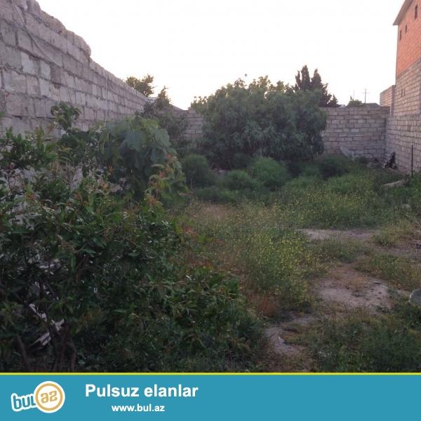 Xezer rayonu, Shuvelan qesebesi, Hacimovlan baglari...