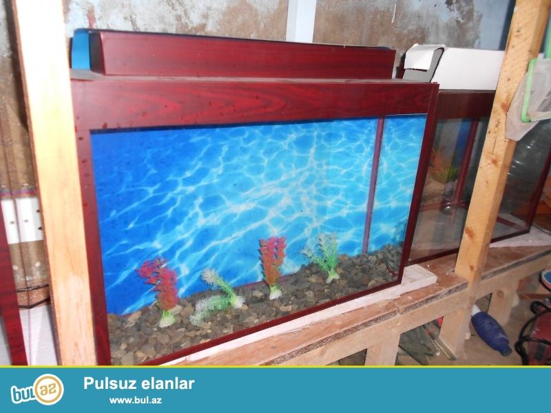 hazir olculerde akvariumlar + baliqlar  avadanliqlarda var  muxtelif olculerde akvariumlar