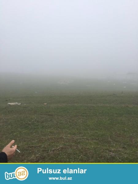 Siyezende Tecili 24Sot torpaq satiram.Kupcasi var.Qalaalti istirahet merkezinin 100 metr yaxinliginda...