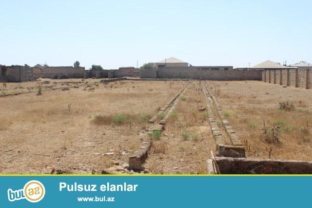 Sabunçu rayon Bilgəh qəsəbəsi, əsas yoldan 500 metr məsafədə, 4 tərəfi hasarlanmış 88 sot torpaq sahəsi satılır...