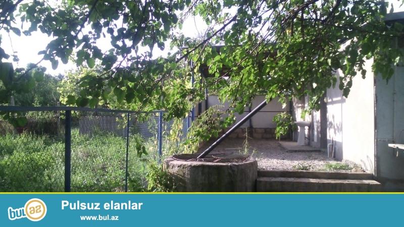Samaxi rayonu medrese qesebesinde 3 otaq heyet evi 40 sot torpaq,bar getiren agaclari var,qaz, su problemsizdi...