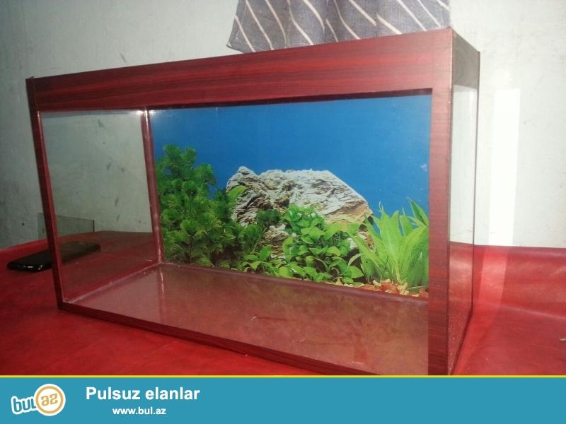 teze akvarium <br /> uzuznu 50 sm<br /> hundurluyu 30 sm <br /> eni  20 sm  <br /> arxa fon wekili var 15 azn <br /> bawqa olculerdede var baliqlar ve avadanliqlarda var