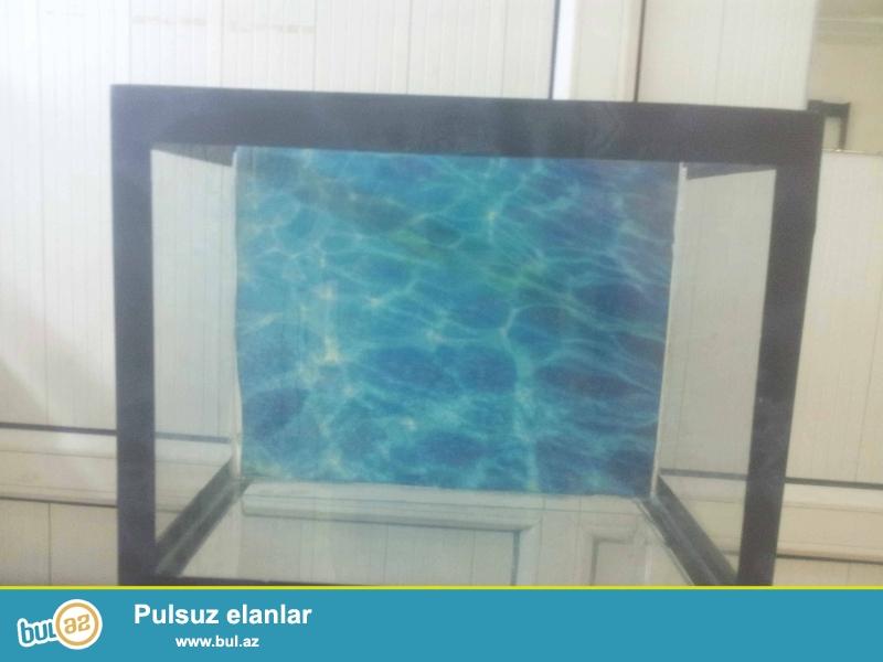 akvarium uzunluqu 33 eni 20 hundurluyu 27<br /> arxa fonuda var<br /> unvan elmler