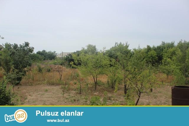 Sabunçu rayonu Savalan qəsəbəsi, əsas yoldan 100 metr məsafədə,6 sot torpaq sahəsi təcili olaraq satılır...