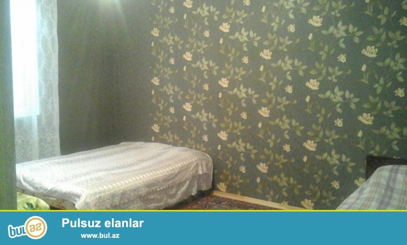 Sabunçu  rayon  Zabrat 1 qəsəbəsi  Kərpic  zavod deyilən ərazidə  198 nömrəli marşrut yoluna 200 m...