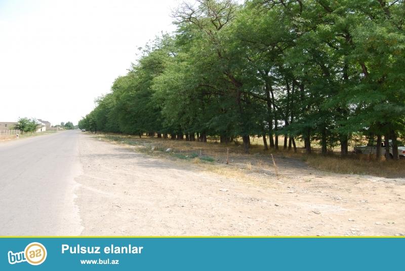 Aznixi dairəsinin düz yanında, sırf obyekt üçün torpaq sahəsi satılır...