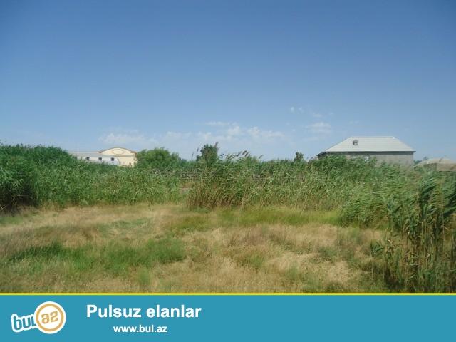 Sabunçu rayonu Zabrat 2 qəsəbəsi, əsas yoldan 100 metr məsafədə, 4 tərəfi hasarlanmış 20 sot torpaq sahəsi təcili olaraq satılır...