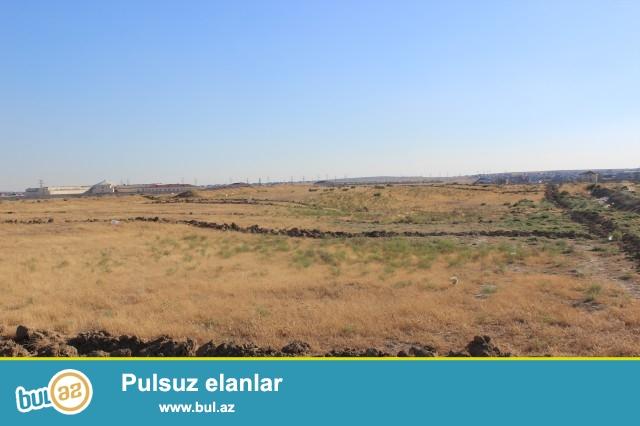 Abşeron rayonu Məhəmmədi qəsəbəsi, əsas yoldan 500 metr məsafədə 4 sot torpaq sahəsi təcili satılır...