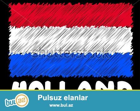 Holland dilini yuksek seviyyede oyredirem. Program 6-8 ay davam edir...