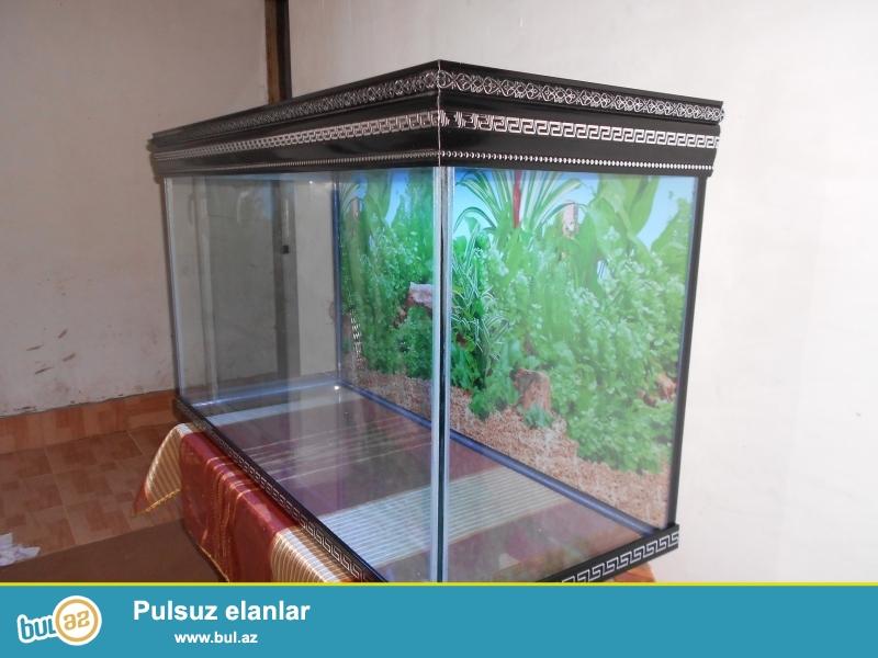 Akvarium 10 mml wuweden 300 litre  (VERSAGE) <br /> teze hazirlanip qapaqi ve arxa fonu var qapaqinda iwiq ucun yeri  var <br /> uzunu  110 sm <br /> hundurluyu 66sm <br /> eni           45sm