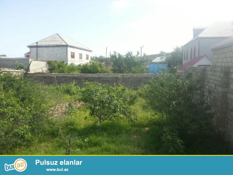 Sumqayitda Teze Kotecde 3 sot torpaq satilir.. qazi suyu işiqi vardir...
