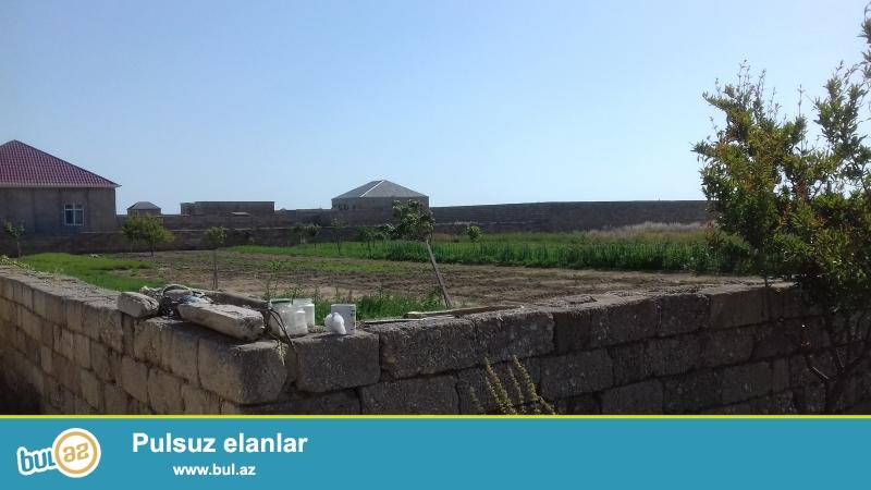 Denizden 1.5 km aralida 40 sot torpaq sahesi. Suyu iwiqi qazi hasari senedi var...