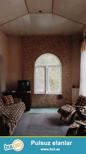 Fatmayı bağlarında 4 otaqlı yaxşı təmirli  həyət evi kirayə verilir...