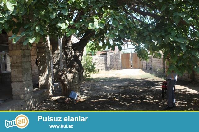 Sabunçu rayonu Maştağa yolunun sağ hissəsi, əsas yoldan 400 metr məsafədə, 5...