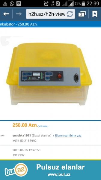 Sala , tam təzə avtomat inkubator 96 yumurtalı.<br /> bazar qiyməti 360 azn di...
