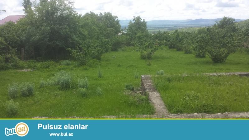 Oğuz rayon Calut kəndində( kənd rayona bitişikdir) 18 sot torpaq sahəsi satılır...