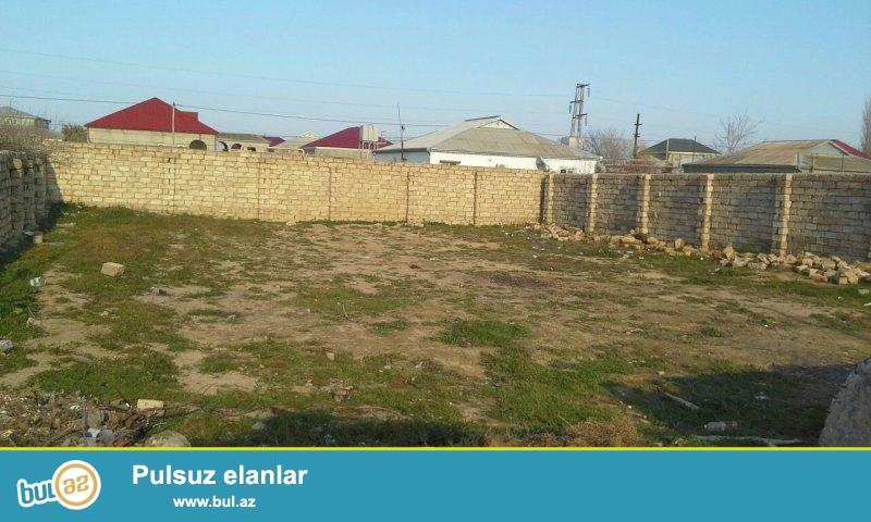 Türkan sovxozunda 10 sot kupcalı hasara alınmış torpaq sahəsi satıram...