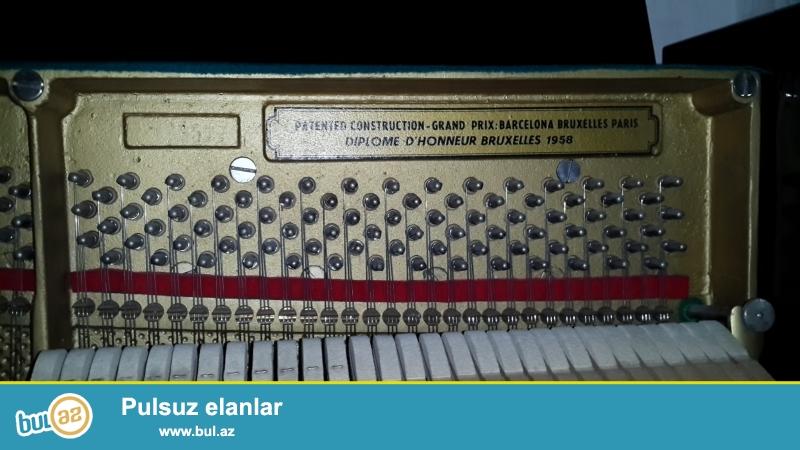 Pianino ustasiyam, tamamile istifade olunmamish Cexiya istehsali ev sheraitinde saxlanilmish, lazimli kimi gullug olunmush Petrof pianinosu teklif edirem, pianinolarin temiri, koklenmesi, catdirilmasi...