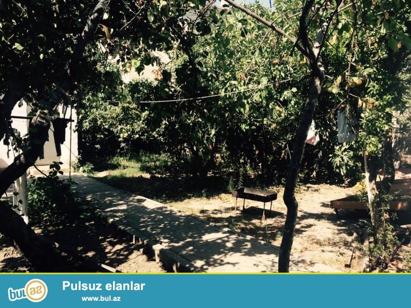 Sabunçu rayonu Bakıxanov qesebesi 9 sot erazi satılır içinde hal hazırda bir 6 bir 3 bir 1 otaglı tıkılı ve bir yarım qalan tıkılısı var hemçınin 55*15qarajı var...