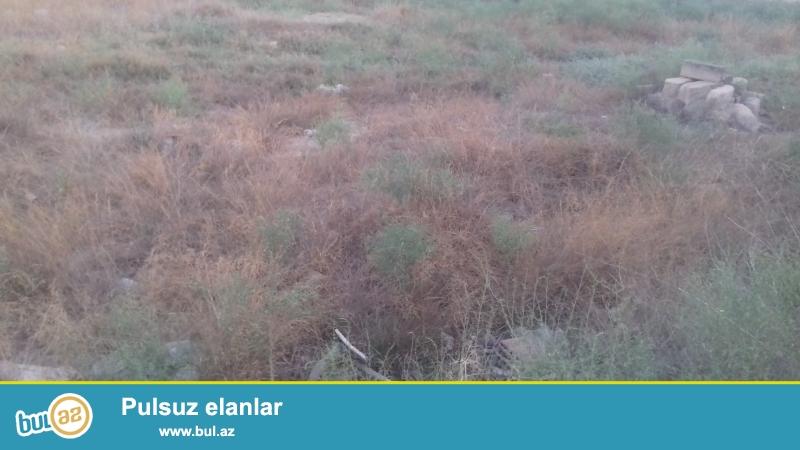 <br /> Tecili, elimyandida Leyish baglarinda ( Kurdexaniyla 3 ( uch ) deqiqe arasi var ) gozel menzeresi, temiz ve mualicevi qumu ve havasi ile sechilen yerde, kurortni zonada on ( 10 ) sot bosh torpaq sahesi satilir...
