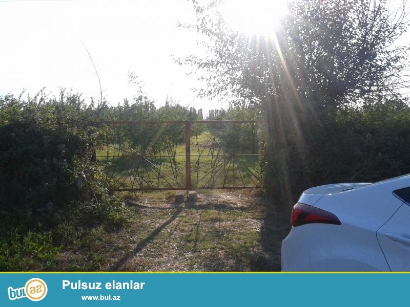 Xaçmaz şəhəri,Xaçmaz-Xudat avtomobil yolunun kənarında Hyundai avtosalonun arxa hissəsində yerləşən 1 hektar 14 sot bağ sahəsi...