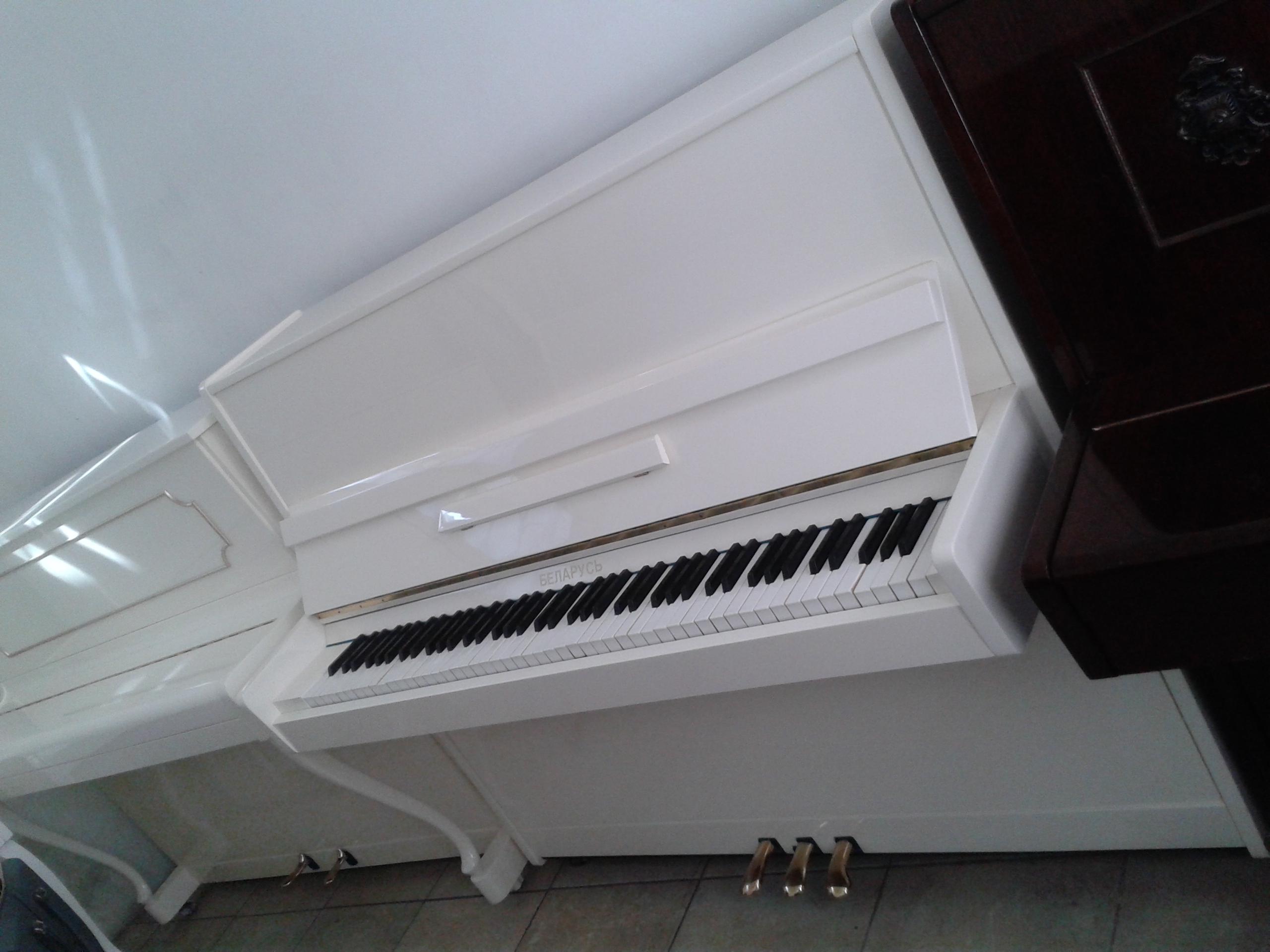 Meşhur brend markalardan pianolar satılır. Müxtelif modellerde ağ, şabalıdı, qırmızı ağac, qara, fil sümüyü rengde ve istenilen renge pianolar satılır...
