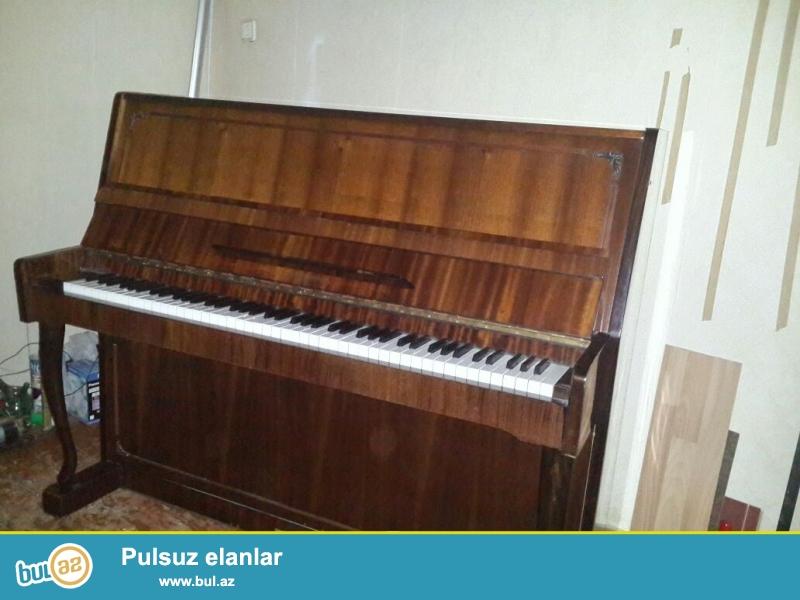 pianino və royal aliram. Pianinolarin təmiri, köklənməsi