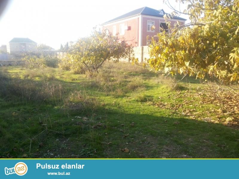 Tecili olaraq Mehdiabad qesebesi esas yoldan 80m mesafede Qarabağ şadliq evinin arxasinda 1sotu 10...