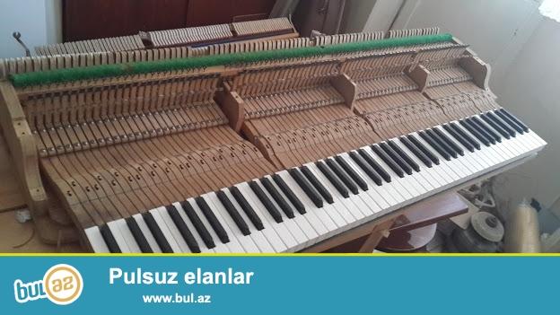 Ag rəngdə əla vəziyətdə Belarus və Petrof pianinolari, ag royal uzun muddətli zəmanətlə satilir...