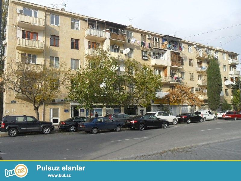 Şəhərin mərkəzində Xəqani küçəsində Eksperimental Minsk layihəli binada 1 otaqlı təmirli mənzil satılır...
