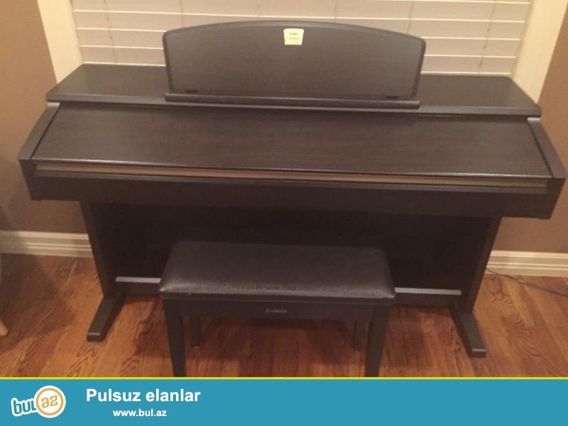 Xmas yenə burada !!!<br /> Promo! Promo !! Promo !!!<br /> <br /> 2 Units 1 pulsuz almaq al!<br /> <br /> <br /> ilk Yamaha Tyros klaviatura 2001-ci ildə geri başlamışdır ildən, Yamaha aranjimançı based klaviatura dominant qüvvə olmuşdur...